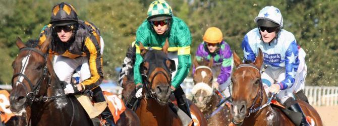 Yorkshire's 9 racecourses host over 180 race days annually