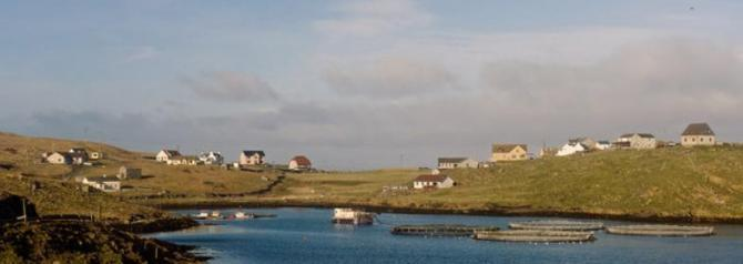 Houses on Housay