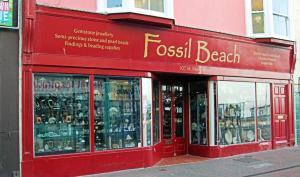 Fossil Beach shop