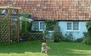 Pet Friendly Cottages in the UK