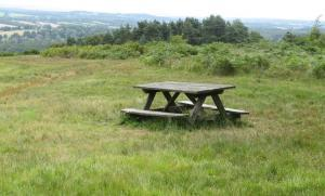 Picnic area near the Forest Centre, with views of the High Weald