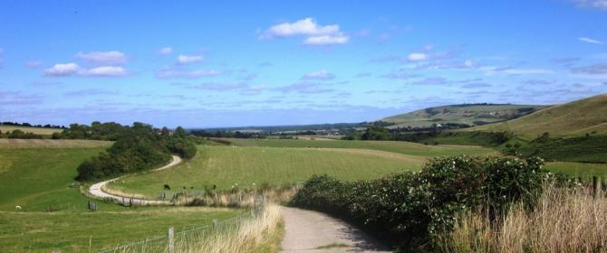 The Steyning Bowl - a beautiful hillside walk overlooking Steyning