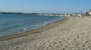 Look for year round dog friendly beaches on the outskirts of Weymouth