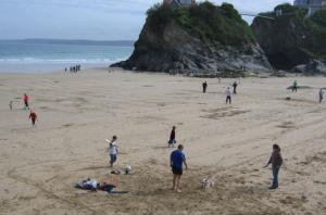 Pet friendly beaches in Newquay