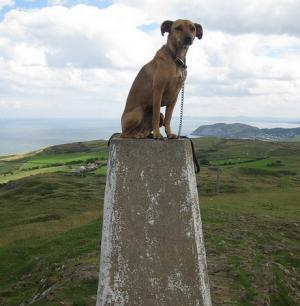 On the Summit of The Great Orme
