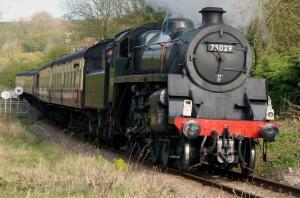 Dogs travel free on the Esk Valley & North Yorkshire Moors Railways!