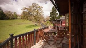 Holiday Parks with pet friendly lodges