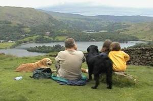 Family walks with dogs - Silver Howe, Grasmere area