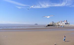 Weston-super-Mare Beach & Pier