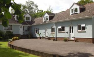 Dog Friendly Cottages in the New Forest