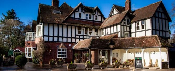 New Forest Pubs with Accommodation