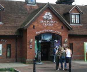 Discover the National Park at the New Forest Centre