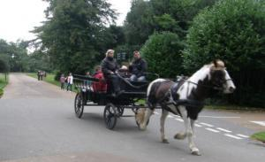 Horse & Cart Rides at Osborne