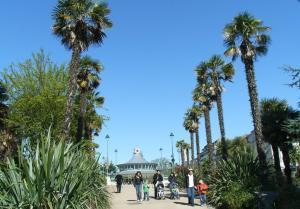 Tropical gardens & palm tree lined walkways