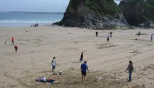 Dog friendly beaches in Newquay