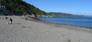 Looe Beaches