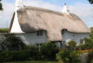 Dog Friendly Cottages in South Hams
