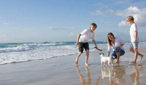 Stay in dog friendly holiday parks on the North Coast at Woolacombe