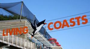 Visit Living Coasts - Torquay's coastal zoo and aquarium