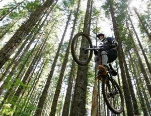 Mountain Biking and more in Adventure Centres near Bideford