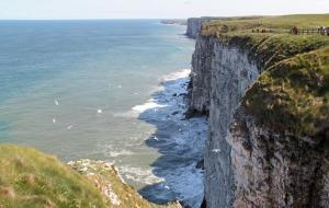 Bempton Cliffs on a beautiful spring day. Credit Stuart Petch
