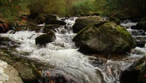 Watersmeet River Gorge