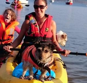 Wacky Watersports with your pooch - Chynhale Barns near Perranporth, Cornwall
