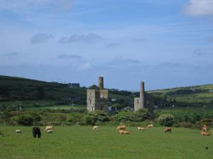 Mining remains around Carn Brea
