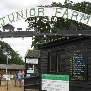 Junior Farm at Wroxham Barns