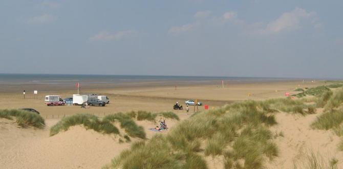 The sand dunes of the Formby & Ainsdale Coast