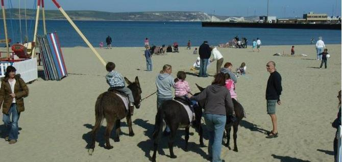 Donkey rides on Weymouth Beach