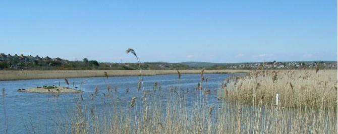 RSPB Radipole Lake
