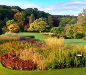 RHS Harlow Carr Garden near Harrogate