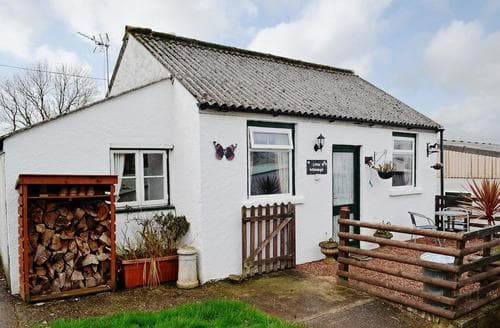Last Minute Cottages - Little Whiteleigh