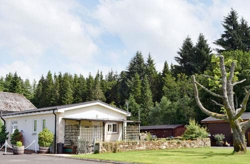 Last Minute Cottages - Fir Tree Cottage - UKC646