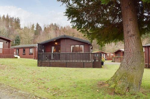 Last Minute Cottages - Lodge 27 Loch Lomond