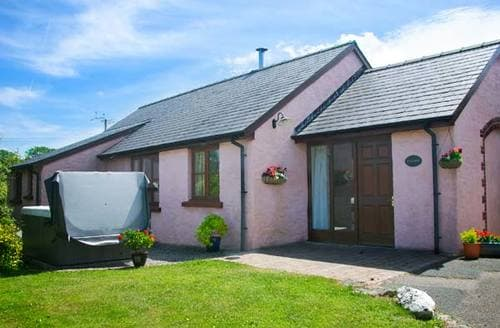 Last Minute Cottages - Ty Coed