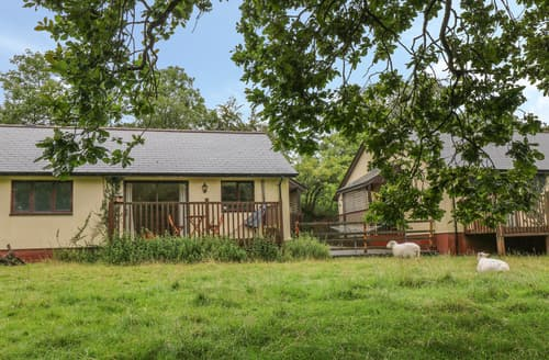 Last Minute Cottages - Woodpecker