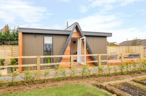 Last Minute Cottages - Alstroemeria