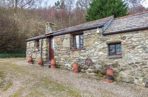 Last Minute Cottages - Quaint Llanbedr Y Cennin Apartment S78348