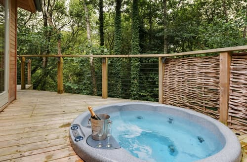 Last Minute Cottages - Gorgeous Cornwall Lodge S76490