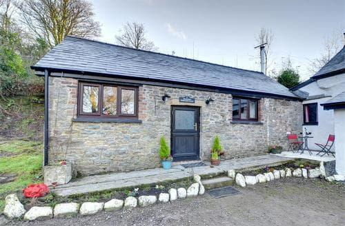 Last Minute Cottages - Bwthyn-Barcud-Coch
