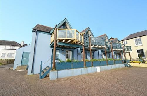 Big Cottages - Attractive Saundersfoot Cottage S43842