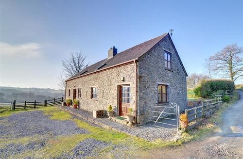 Last Minute Cottages - Attractive Llandovery Rental S11220
