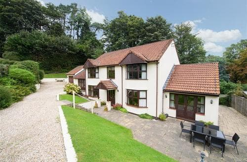 Big Cottages - Splendid Saundersfoot Cottage S43838