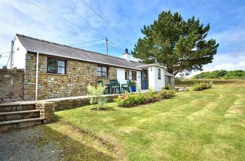 Last Minute Cottages - Trefaes Bach