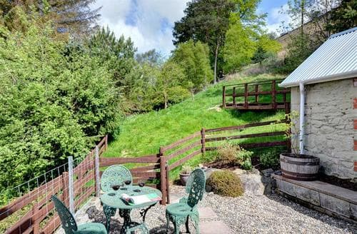 Last Minute Cottages - Cosy Rhayader Cottage S37817