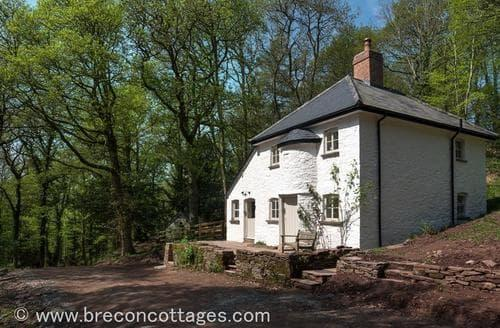Last Minute Cottages - Attractive Brecon Town Cottage S57734