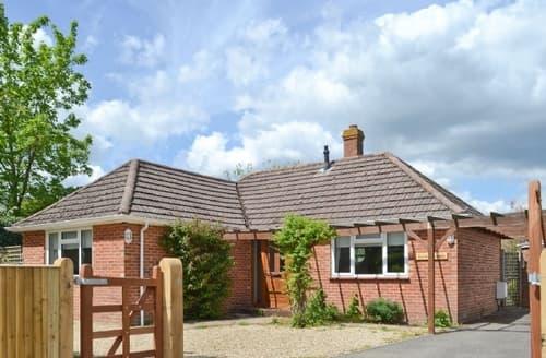Last Minute Cottages - Cosy Brockenhurst Lodge S14067