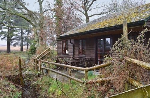 Last Minute Cottages - Adorable Ringwood Lodge S14130